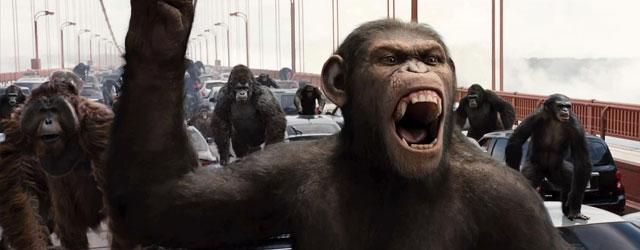 הקופים מצליחים מעל למשוער, הדרדסים משפילים את הבוקרים, הארי נגד הרובוטים, וריאן ריינולדס מסכן
