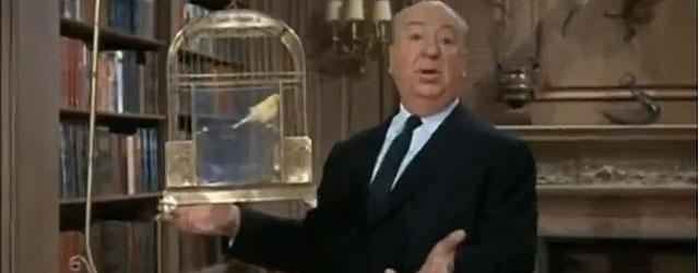 אלפרד היצ'קוק מספר לכם על האדם וחברתו הטובה ביותר, הציפור