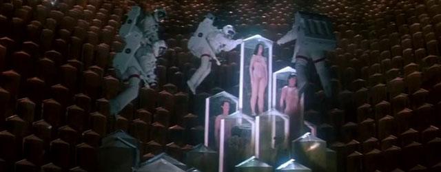 """בואו לראות את אחד הסרטים הגרועים הטובים ביותר אי פעם, והישארו גם ל""""קונג פיורי"""" או למרתון אייטיז שלם"""
