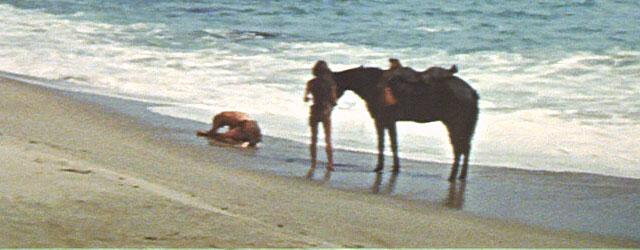 איך באמצע הוליווד האופטימית והחייכנית מסתתרת, כבר כמעט 50 שנה, סדרת סרטים חתרנית, פוליטית ופסימית