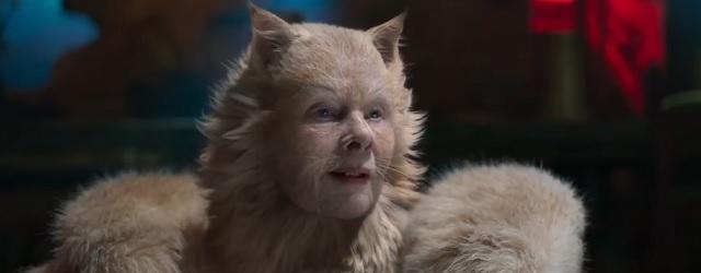 מיאו, חתולה.